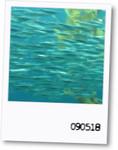 meltylove2009-05-18