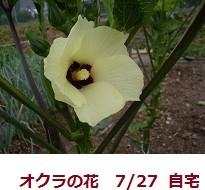 mikawakinta632011-09-12