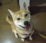 miyuki19672010-12-18