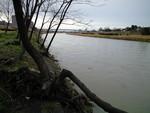 雨後矢田川