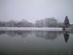 mnumeda2011-02-11