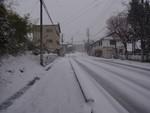 mnumeda2013-01-26