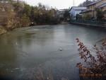 青木溜池結氷