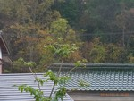 mnumeda2014-11-09