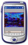 n7shi2009-08-11