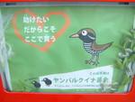nakatomimoka2009-10-30