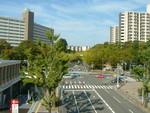 nakatomimoka2013-10-09