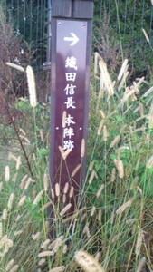 長篠茶臼山 兵どもが夢の跡