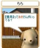 nekomama2005-10-18