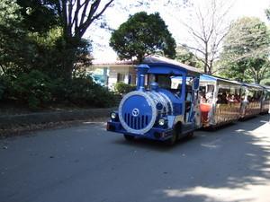 列車型バス
