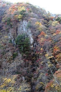 nonaka122009-11-03