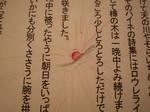 ochamatsuri2009-05-24