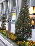 銀座の歩道もクリスマス。