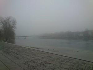 ライン川から立ち上る霧