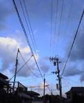 qyu2005-01-31