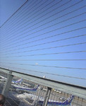 qyu2005-02-07