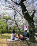 qyu2005-04-09