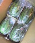 qyu2005-06-13