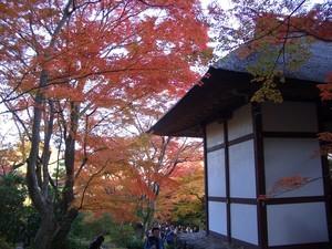 [観光]京都