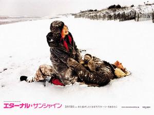 rosa412005-04-02