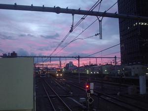 rosa412007-04-14