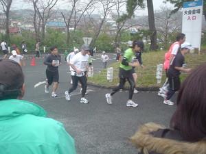 rosa412008-11-16