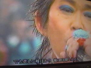rosa412009-05-12