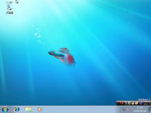 Windows 7 on Xen
