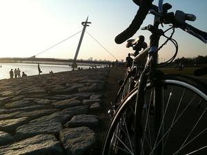 葛西臨海公園 + ロードバイク