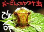 ryohu2006-05-30