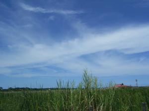 sayakot2007-10-14