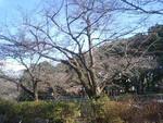 suneon2008-02-27