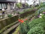 takase222012-06-22