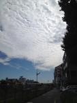takase222013-08-26