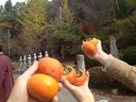 takase222013-11-05