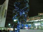 tatsumine2008-11-22