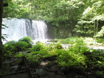 夏に行った奥入瀬・銚子大滝