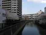 京急蒲田駅 呑川より