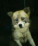 tomoey2004-11-10