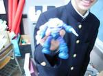 toshobu2006-01-23