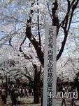 toyotoki112012-04-09