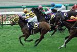 tsuchiura2008-04-13