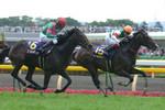 tsuchiura2008-05-26