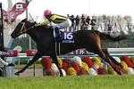 tsuchiura2008-11-17