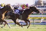 tsuchiura2008-12-01