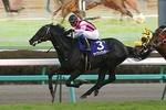tsuchiura2008-12-21