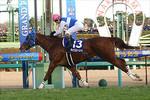 tsuchiura2008-12-28