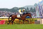 tsuchiura2009-05-31