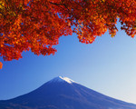 tsuchiura2010-11-03
