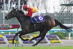 tsuchiura2010-11-14